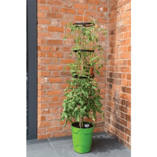 Plantenbak tomaat bij muur